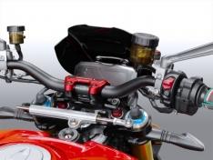 Ζελατίνα StreetFighter V4 / S 2020-2021 WRS Ducati Matt Black Sport